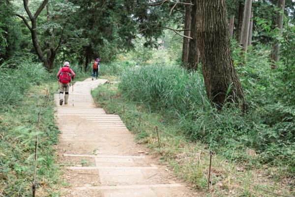 スカイツリーから浅草まで徒歩15分!王道コース完全ガイド!