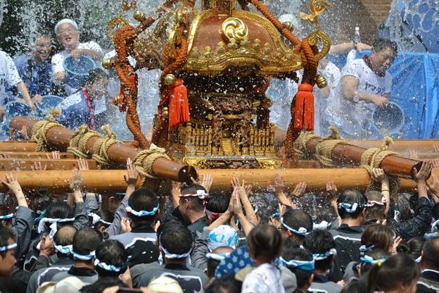 【深川八幡祭り大特集】日程や見どころ交通規制を徹底チェック!