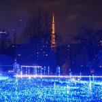 【東京タワーイルミネーション2016冬】点灯時間と混雑状況をチェック!