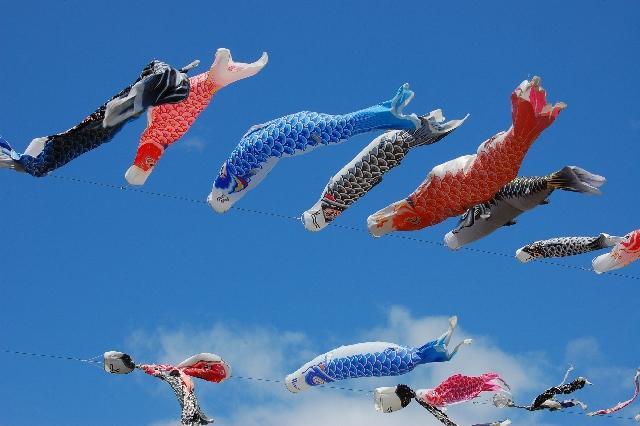 【羽毛布団のおすすめの洗濯方法】頻度は2年に1回!