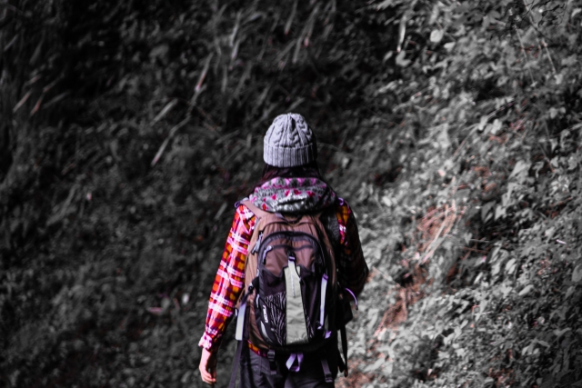 【富士山の山小屋ガイド】予約と快適に過ごす方法をチェック!
