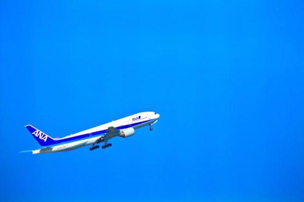 【城南島海浜公園を完全攻略】羽田で飛行機を見ながら手ぶらBBQ!