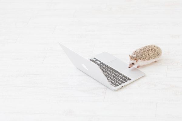 【MacBookAir 2018Retinaモデル】徹底して安く買う方法!最安比較!
